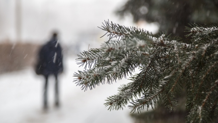 Снег выпадет и сразу растает: волгоградский климатолог рассказал о погоде на конец осени