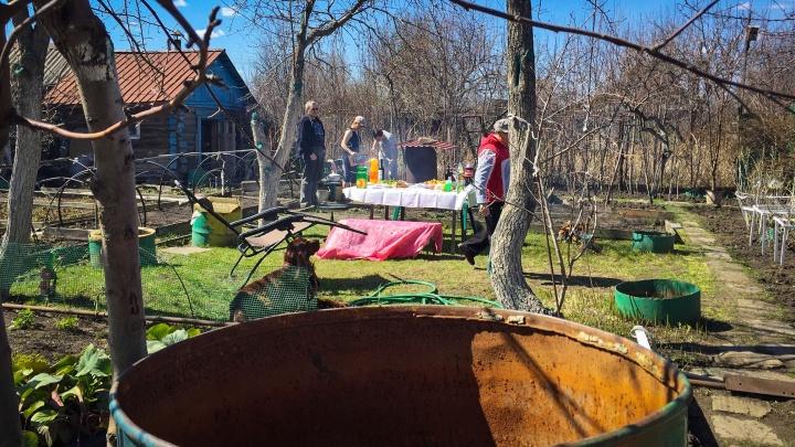 Власти Челябинской области прояснили судьбу любителей шашлыков в майские праздники