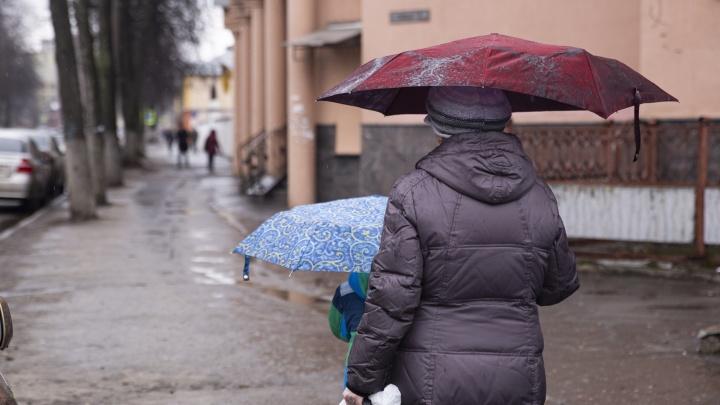 «Обильные дожди и похолодание»: отступит ли непогода к 1 Мая