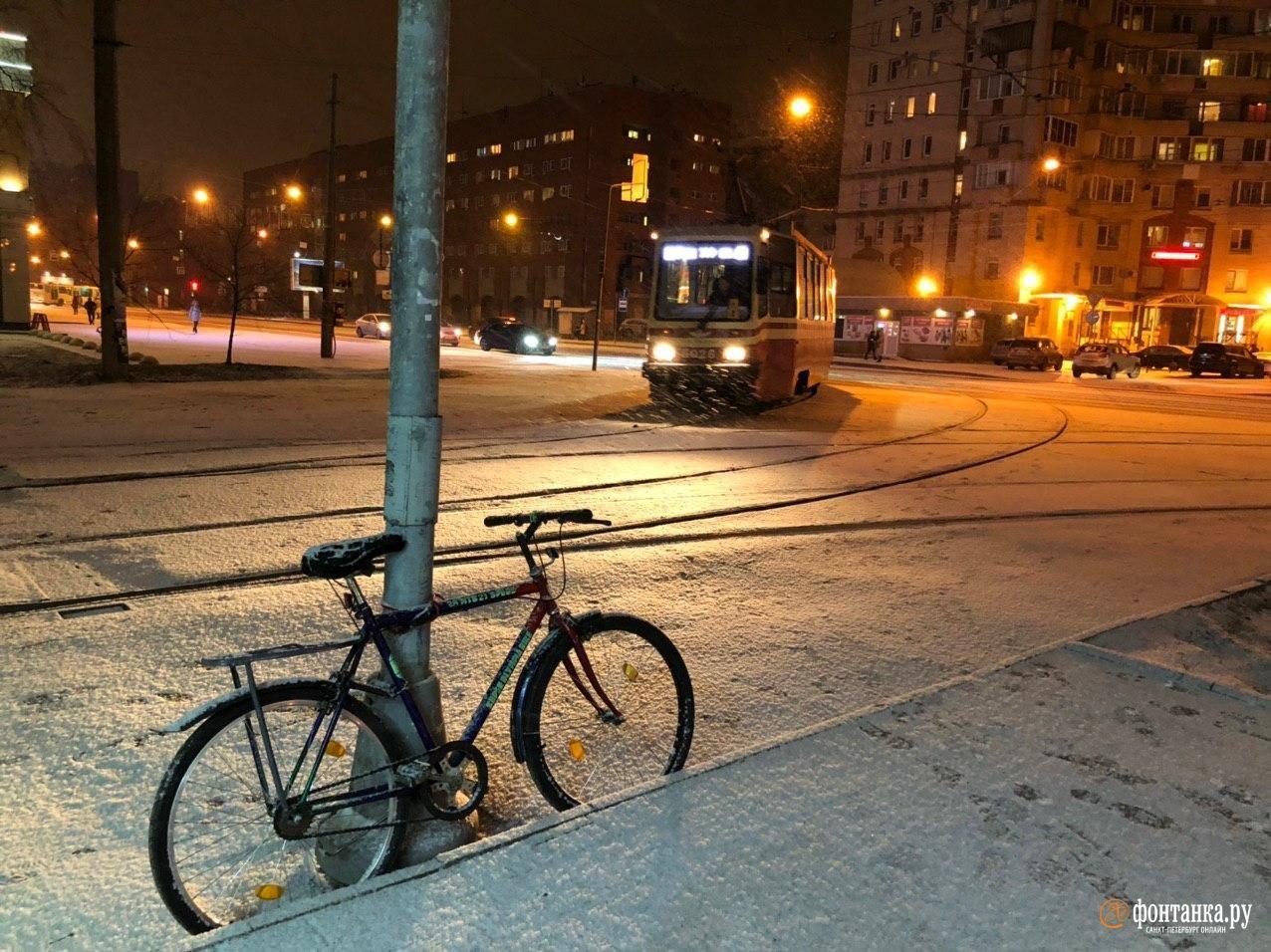 И вдруг неожиданно выпал снег. Санкт-Петербург, 23 января 2020 года