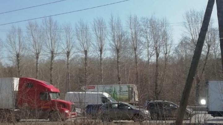 Дома не сидится: новосибирцы застряли в трехкилометровом заторе на Бердском шоссе