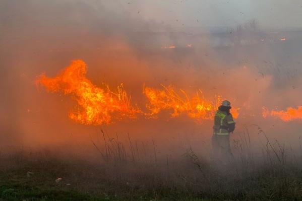 К сожалению, этот ландшафтный пожар не обошелся без жертв