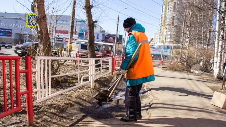 Без общего субботника: в администрации Архангельска рассказали, как будут прибирать город по весне