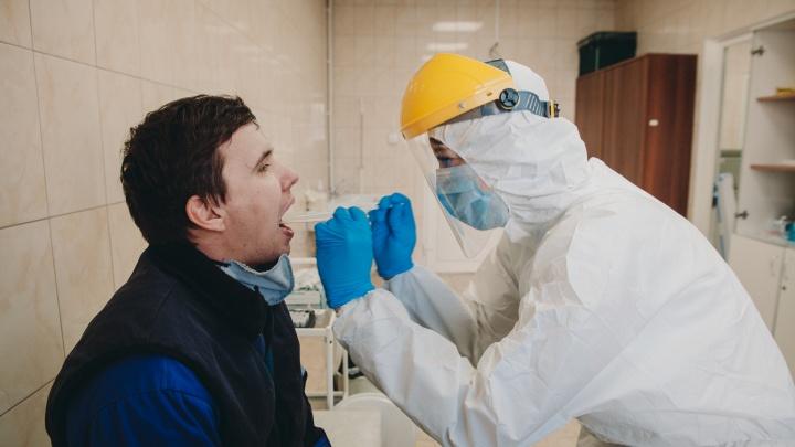 В Минздраве рассказали, сколько тестов на COVID-19 делают в Кузбассе ежедневно