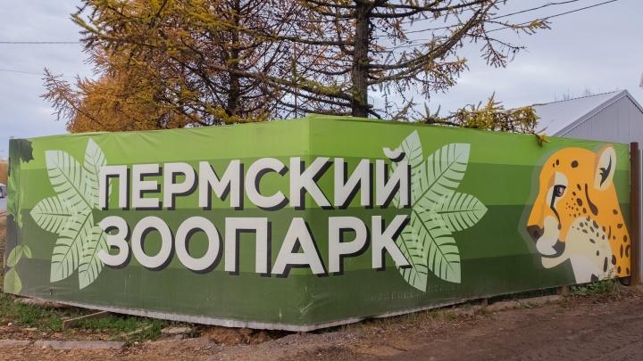 Итоги проверки нового зоопарка в Перми: 9 строений находятся в аварийном состоянии