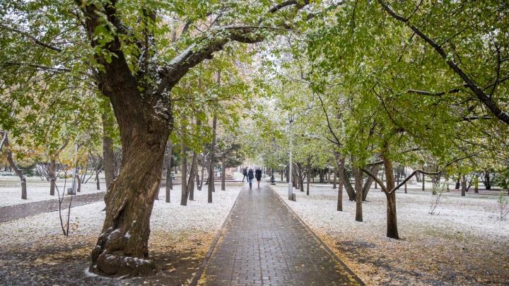 Мокрый снег при порывистом ветре: новосибирские синоптики рассказали о погоде на ближайшие дни