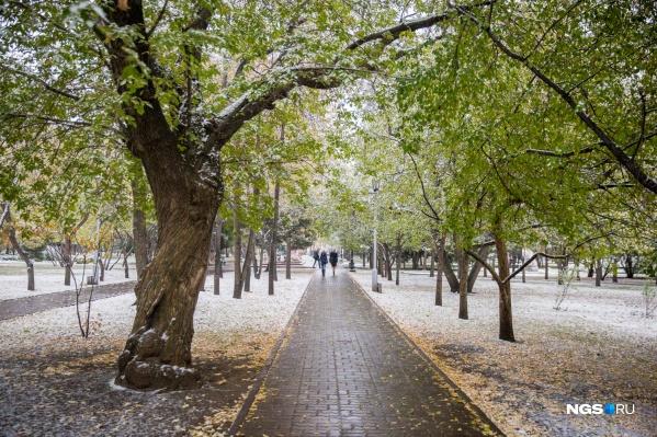 Новосибирцам стоит приготовиться к ухудшению погоды и даже снегу