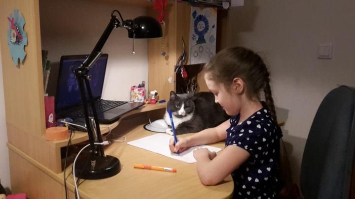 Дети читают сказки, а педагоги учат готовить: как в екатеринбургских школах восполняют дефицит общения