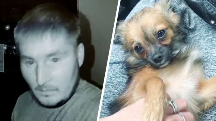 Отсидел за кражу зерна: что известно о живодере с Латвийской, запинавшем в лифте собаку