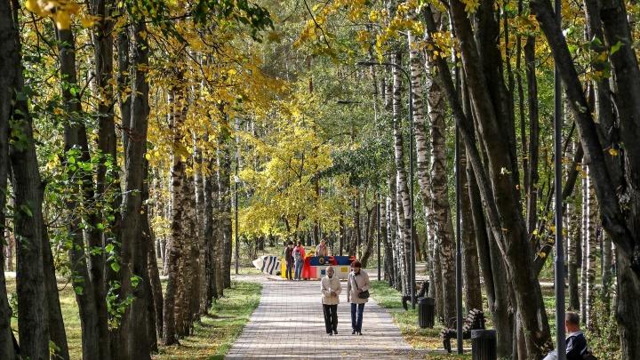«По сравнению с тем, что было, просто супер!»: оцениваем благоустройство Светлоярского парка