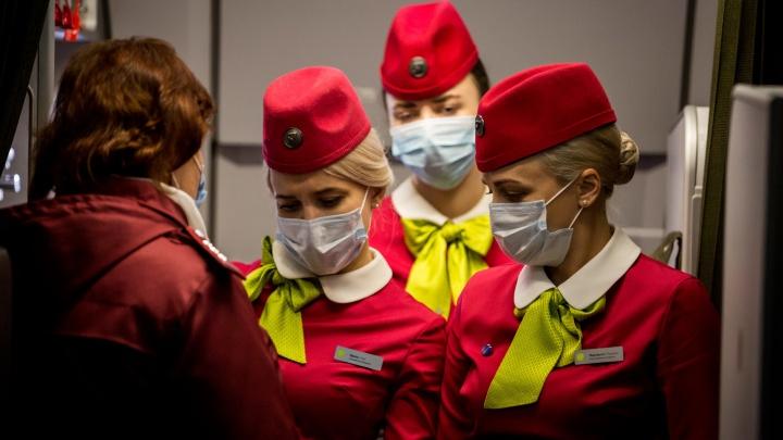 5 вопросов стюардессе: как она работает после закрытия границ и чем защищается от коронавируса