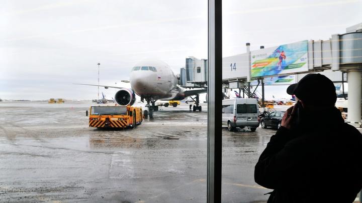 «Потерял сознание»: в аварийно севшем самолете умер пассажир — он летел из Новосибирска в Москву