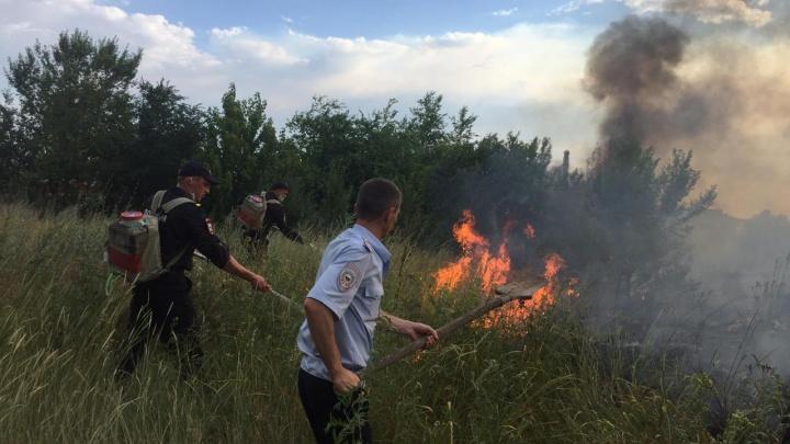 Покурил и сжег 80 гектаров степи: полицейские нашли виновника природного пожара во Фролово