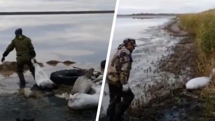 ФСБ поймала браконьеров, выловивших почти 400 килограммов планктона