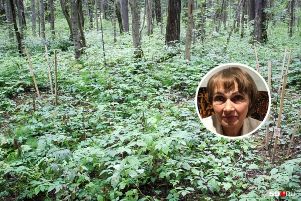 Тело женщины нашли в лесу