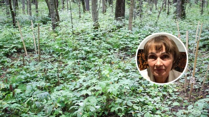 Под Лысьвой нашли тело пенсионерки, которая пропала полтора месяца назад