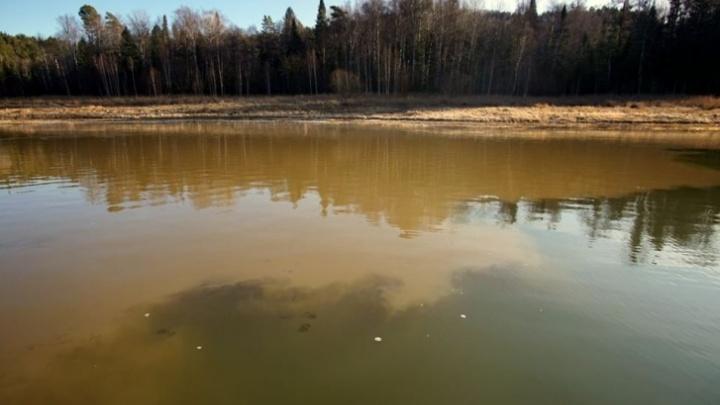 В реке Манского района обнаружили сильное загрязнение. Там добывают золото