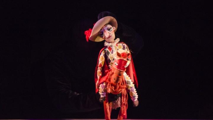 В Архангельском театре кукол из-за угрозы коронавируса отменили спектакли