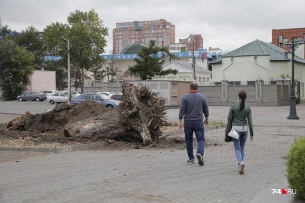 Такое озеленение Челябинска вызывает у жителей города большие вопросы