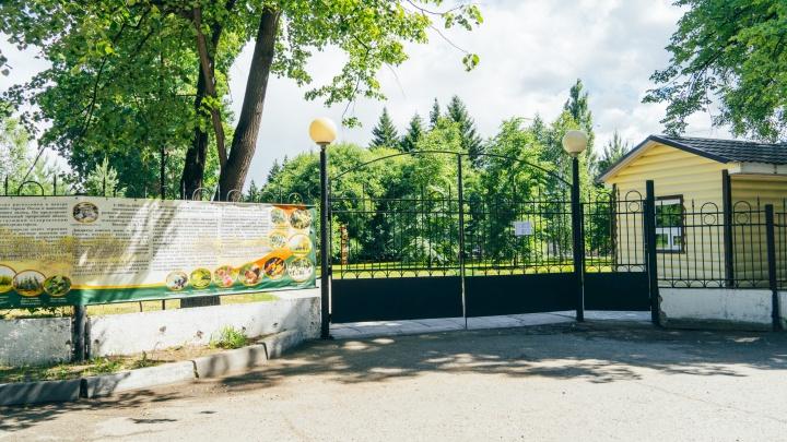 Дендросад заплатит 600 тысяч рублей за экскурсии по чужой земле