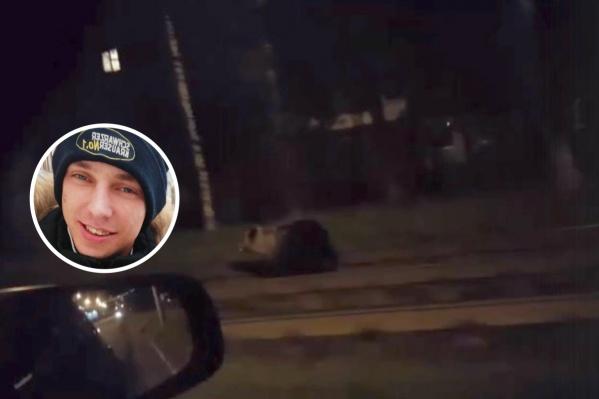 Подросший медвежонок бежал по улице Труфанова в Брагино. Он накинулся на прохожего, появившегося на пути