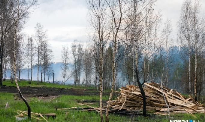Жарить шашлыки и ходить в лес запретили в 8 районах на юге края
