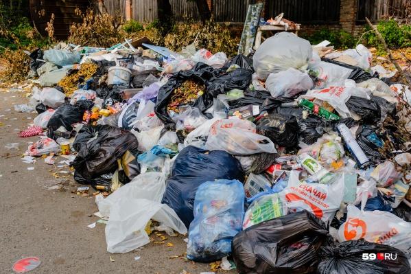 Скопления мусора будут выявлять с помощью дронов