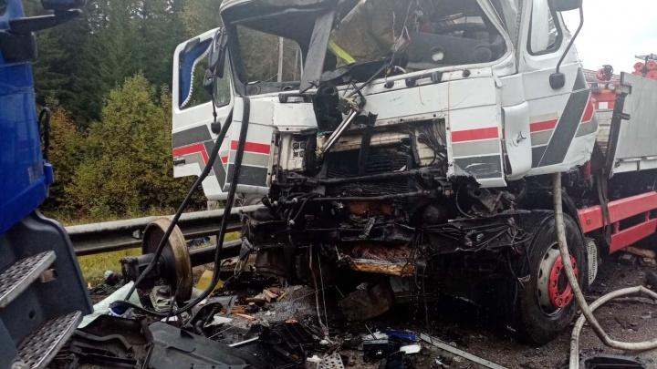 Обе кабины всмятку: в Прикамье лоб в лоб столкнулись два грузовика