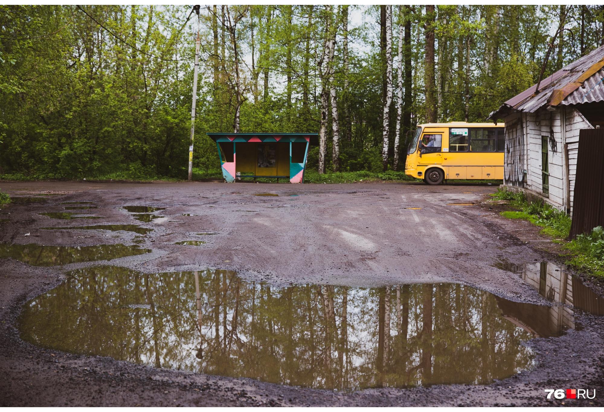 В Очапки ходят маршрутки и автобус
