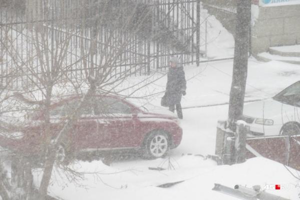 В Курганской области второй день бушуют метели из мокрого снега с дождем