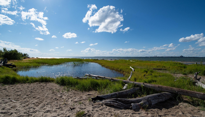 Четверо сибиряков застряли на острове Обского моря из-за перевёрнутой лодки
