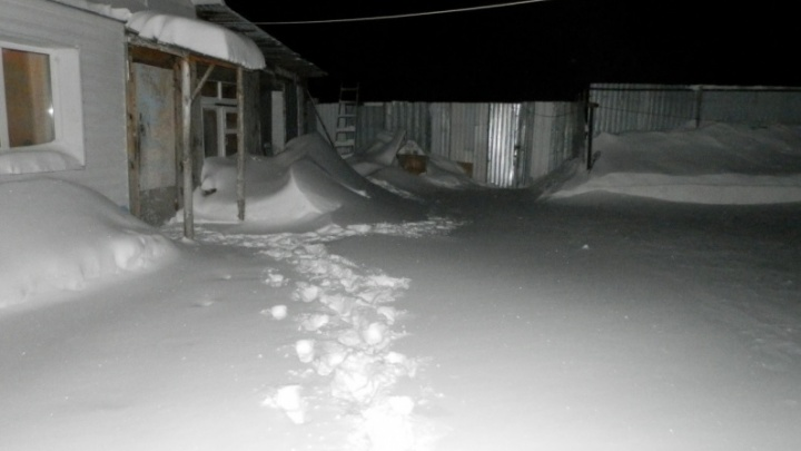 В Зауралье женщина избивала бездомных кочергой и держала их в холодном подвале
