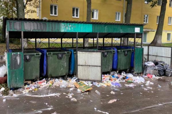 Ярославцам придется больше платить за вывоз отходов