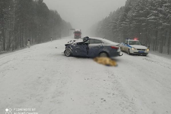 Водитель и пассажир легковушки из села Бердюжье скончались на месте аварии