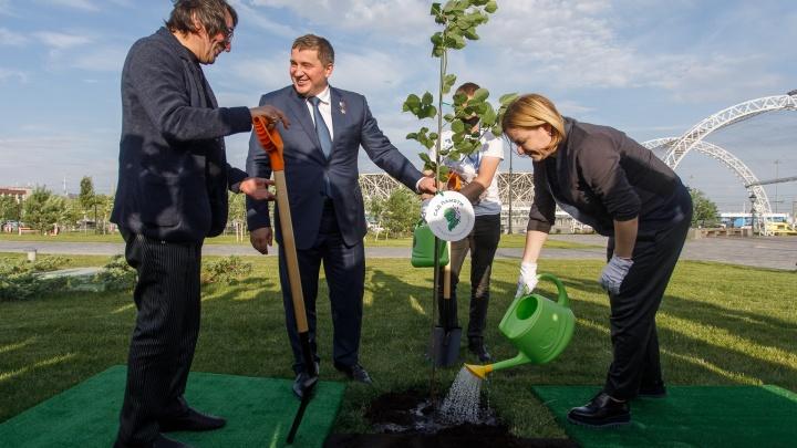 «Легенда моей семьи»: министр культуры посадила дерево в парке у подножия Мамаева кургана