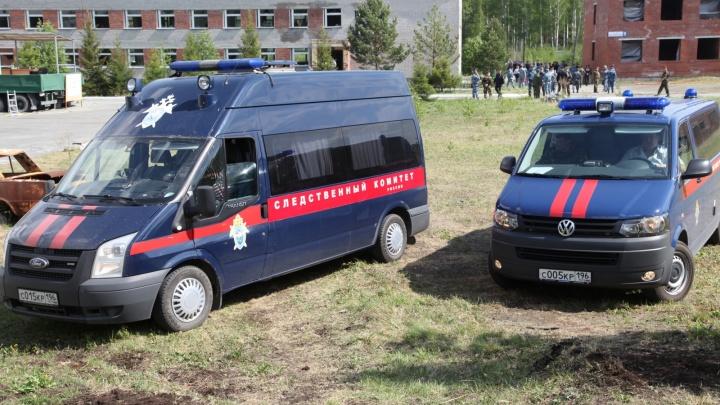 «После удара выпал из коляски»: следователи выяснили, как екатеринбуржец избил семимесячного сына