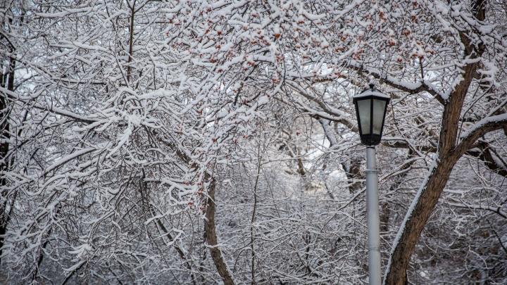 Как долго в Новосибирске продержится теплая погода: синоптики дали свой прогноз