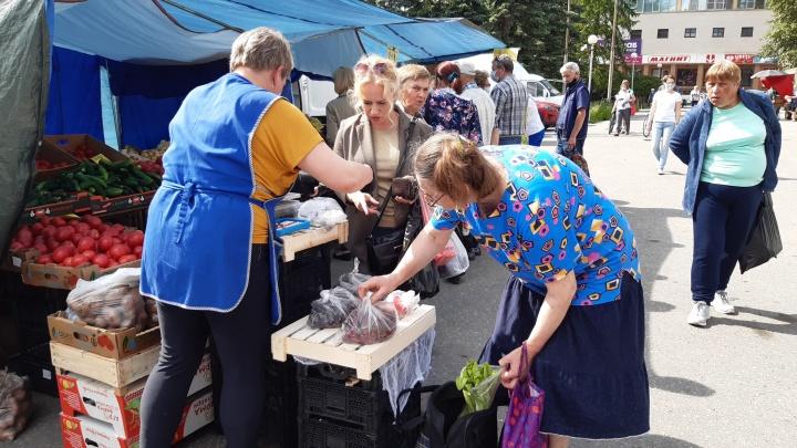«Нашему Ивану ничего не страшно»: как проходит первая летняя ярмарка в центре Архангельска
