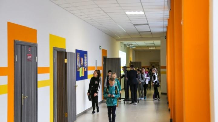 Стало известно, как будет организовано дистанционное обучение в школах Башкирии