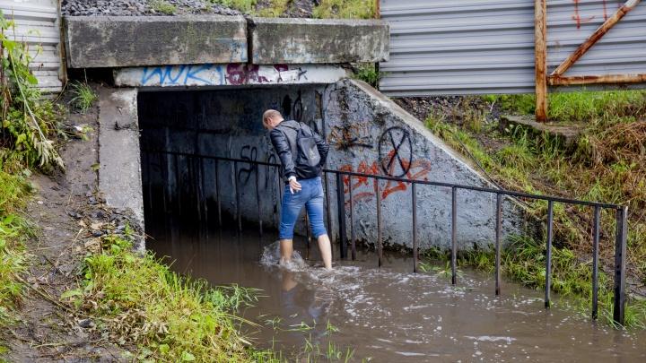 Тёмные воды: ярославцы вынуждены босиком добираться до дома через затопленный тоннель