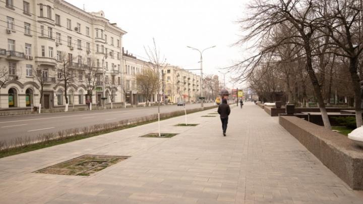 Хроники коронавируса: в Ростовской области разрешили ходить на работу бухгалтерам и охранникам