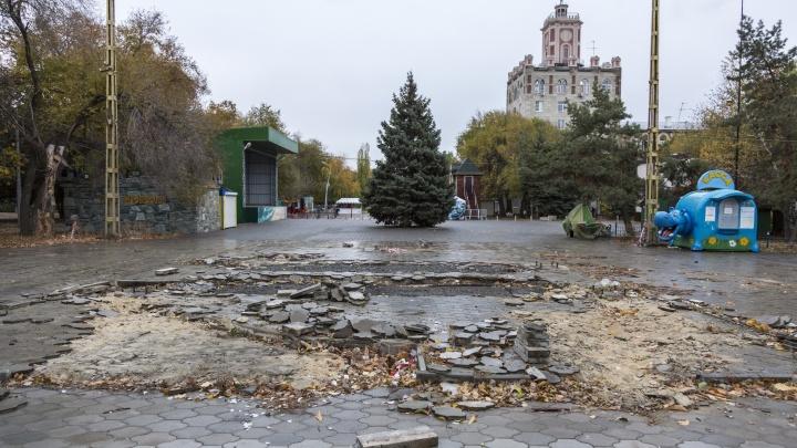 Из французского Версаля — в Японию: московские архитекторы рассказали о реформах в горсаду Волгограда
