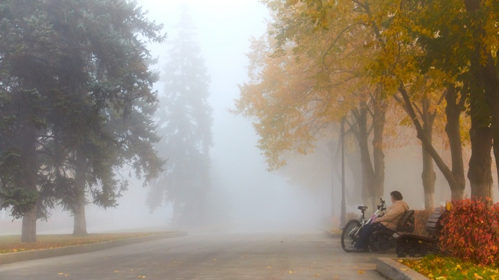 Синоптики обещают самарцам туманные выходные