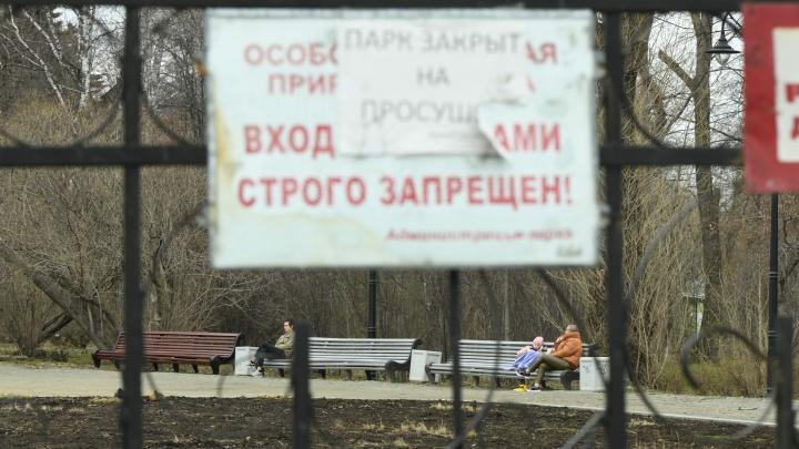 А как же самоизоляция? В Екатеринбурге потеплело, и люди потянулись в парки