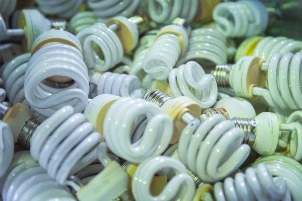 Лампочки, градусники и батарейки могут очень сильно навредить окружающей среде