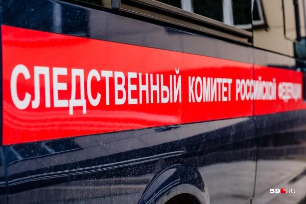 Дело расследовал СК по Пермскому краю