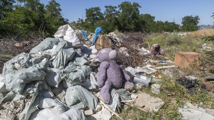 Правительство РФ дало 174 млн рублей мусорному оператору Волгограда, уличённому в завышении тарифов