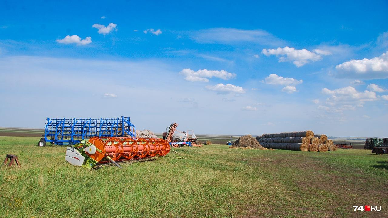 Юг Челябинской области живёт за счёт полей