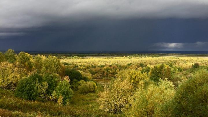 Бабье лето придёт в Архангельскую область в четверг
