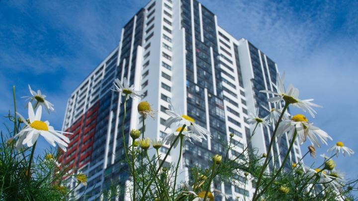 Неожиданные результаты показал опрос о жилищных предпочтениях миллениалов